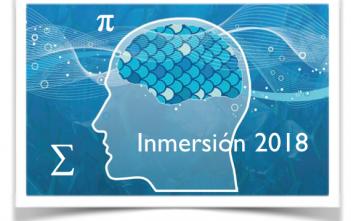 Immersion Program banner